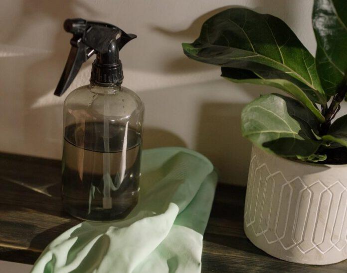 Jak ekologicznie sprzątać?